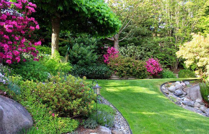 Kako da vaše dvorište bude najlepše u kraju